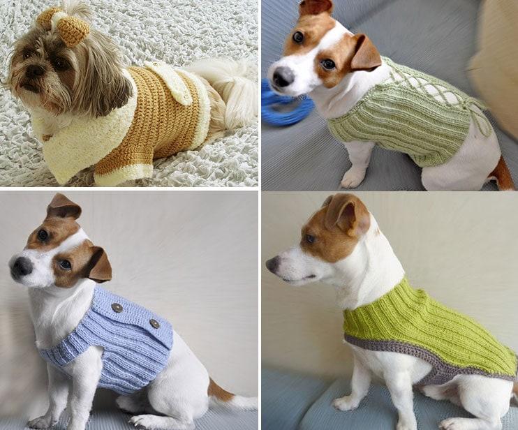 Küçük ırk örgü köpek kıyafeti modelleri