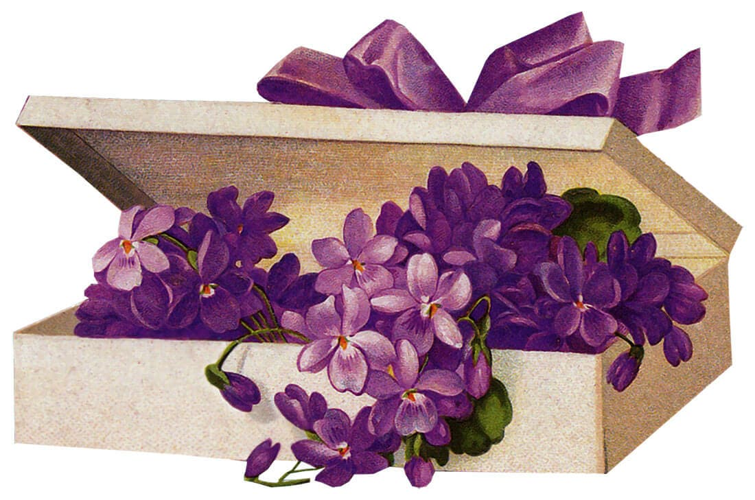 Lavantalı kutu dekupaj resmi
