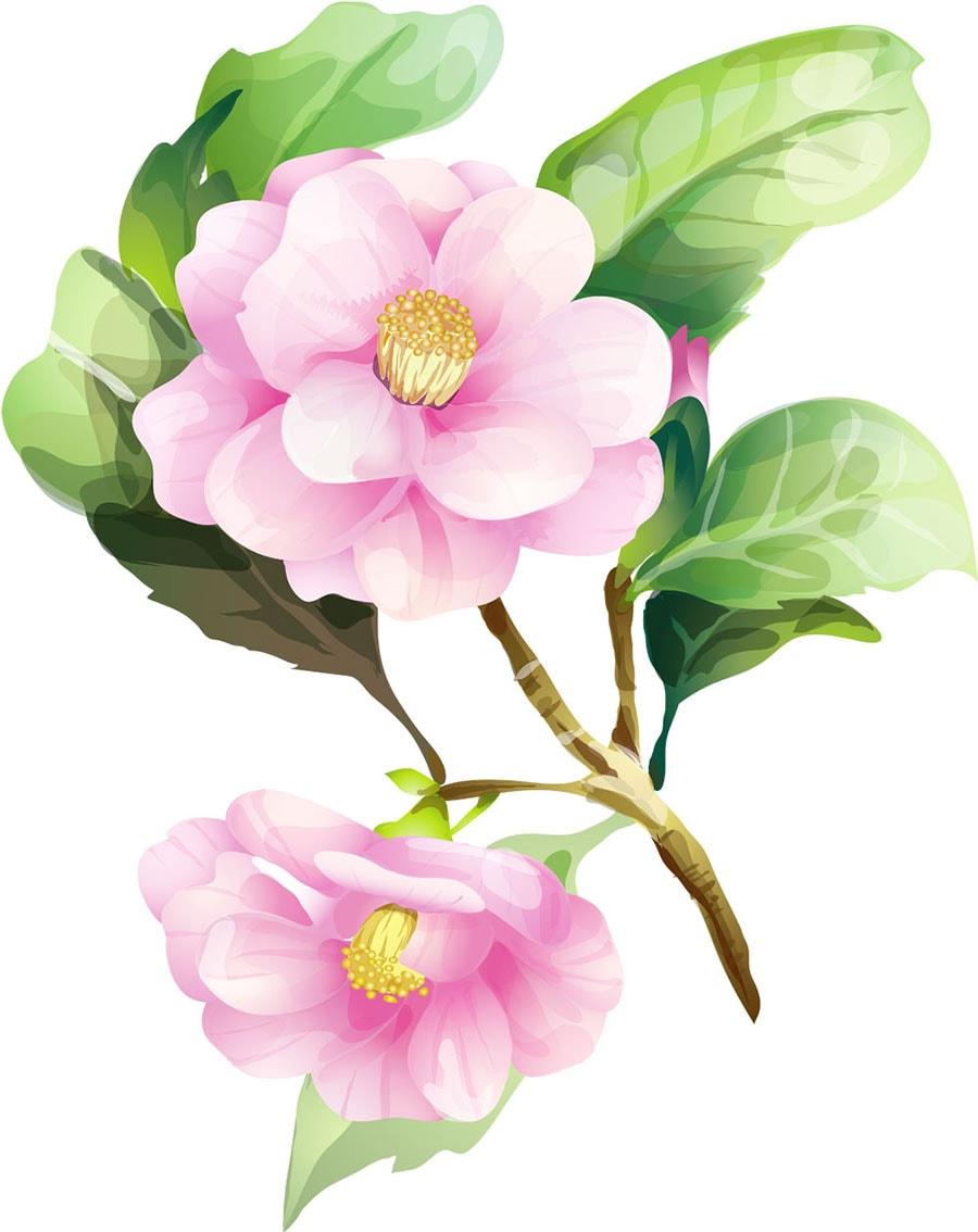 pembe renkli çiçek grafikleri