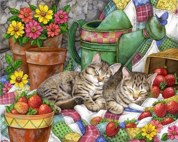 uyuyan kediler resmi